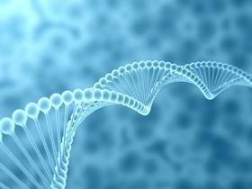蛋白质鉴定中的疑问